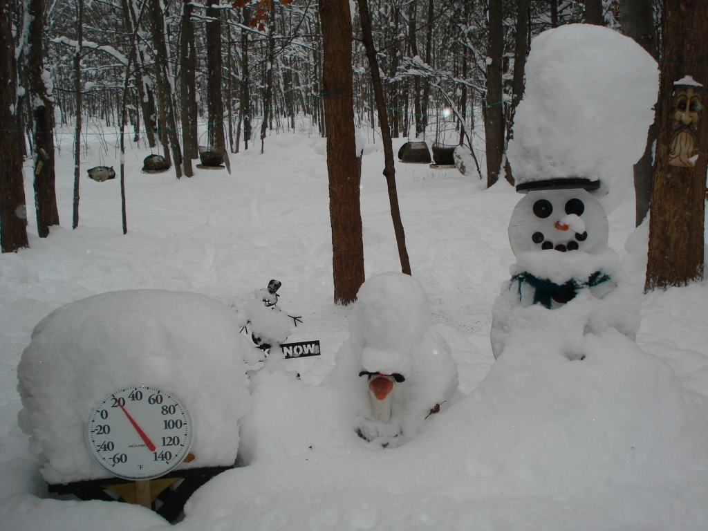 Snowman Cam Gaylord Michigan Live Video Streaming Webcam