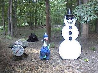 Black Bear visits the Snowman on July 1, 2008