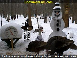 Wild turkeys stop by the snowman cam for a snack.
