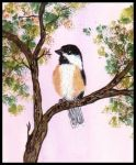 Chickadee perched on a tree limb. Painting courtesy of Tansy Phillips.