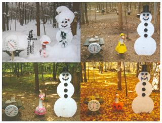 Snowman Cam greeting cards.